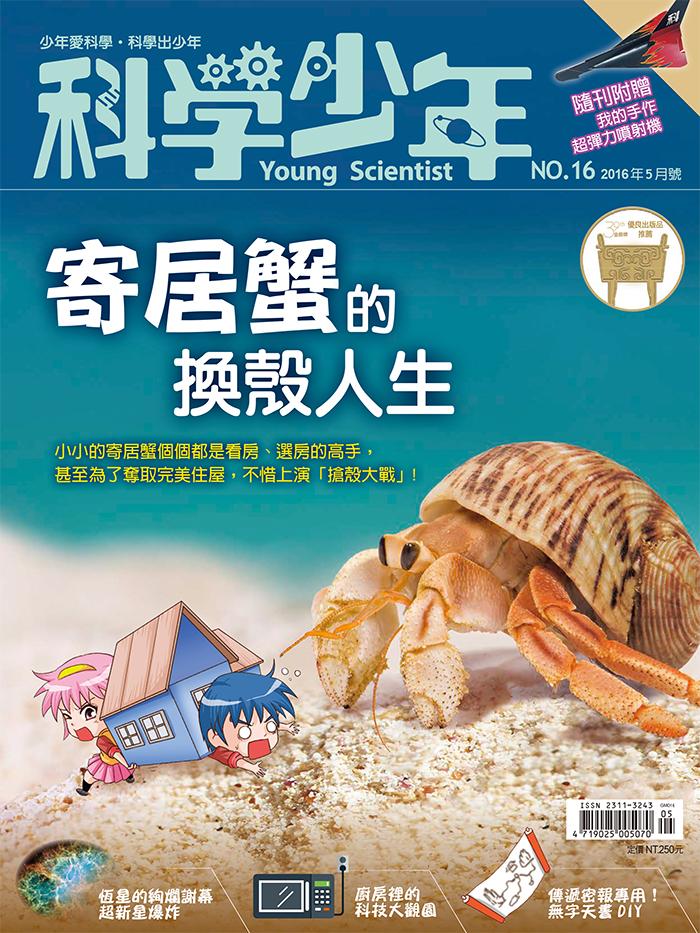 寄居蟹的換殼人生